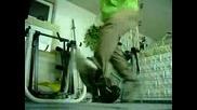 Dnb Dance By Gara