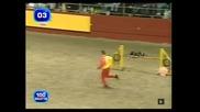 Най-бързото куче