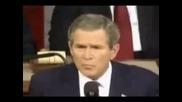 Beatbox Bush axxaxa