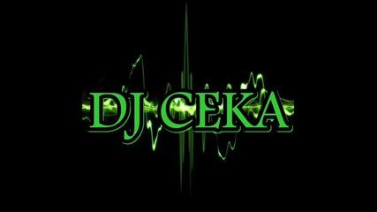 Dj Ceka - House Mix 2013 {17}