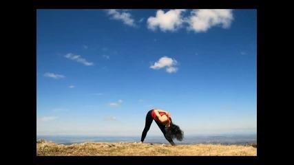 Йога по Б.к.с.айенгар