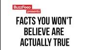 Факти, които няма да повярвате, че всъщност са истина
