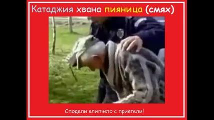 Видео - (2015-01-02 13:13:18)