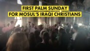 3 years without Palm Sunday for Iraqi Christians