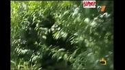 Любовната Пейка - Смях - Господари На Ефира 18.06.08 High Quality