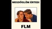 Flm-- Miert Nincs Nyaron Ho 1993
