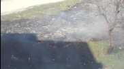 Fireice - War in Libia