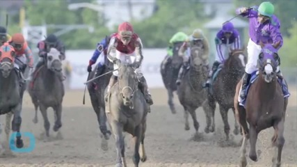 Kentucky Derby: Bourbon Sales Through the Hoof!