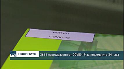3614 новозаразени от COVID-19 за последните 24 часа