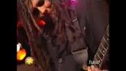 Korn - Starting Over (Live)
