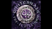 Whitesnake - The Purple album 2015