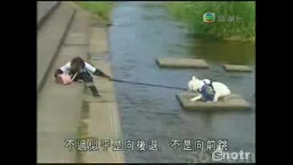 Маймуна превежда куче през реката!
