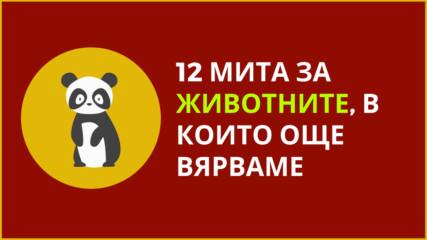 12 мита за животните в които още вярваме