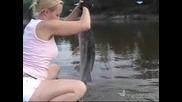 Праисторическа Риба