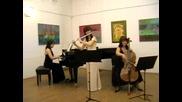 Трио Tenderly-Donau-Strauss