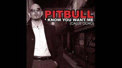 Pitbull - I know you want me (смразяващ Микс)