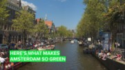 Amsterdam makes going green look easy