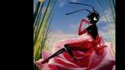 Комарко се женеше... ...