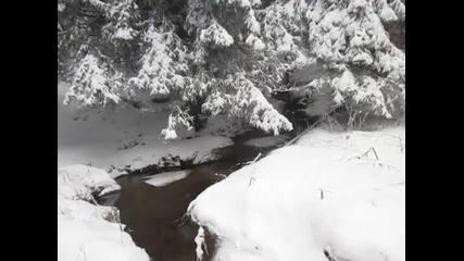 Честит първи сняг! Снежна Витоша - Алеко 2015