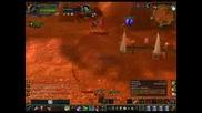Ninelifes 70 Lvl Druid