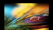 Gary Moore - Still Got The Blues - Превод