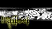 Bleach - Hitsugaya Toushiro vs Tia Harribel
