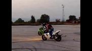 Dragon Riders - Stunt Ride Day