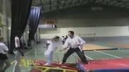 Гимнастически падания