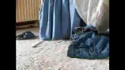 Обувка От Монети