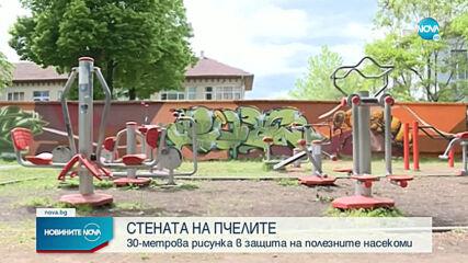 Нарисуваха 30 метрова Стена на пчелите в София