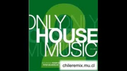 Best Of House Music 2008 Vol.