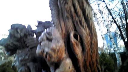 Дървото на времето