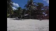 Surf & Sun - Jamaica