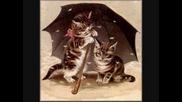 Да Паднеш От Смях - Котки