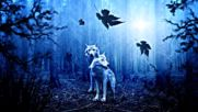 Enchanted Celtic Woods In the Green Man Valley Magical Forest Celtic Music