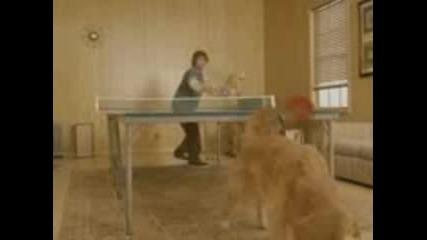 Tова Трябва Да Се Види Пинг Понг С..куче