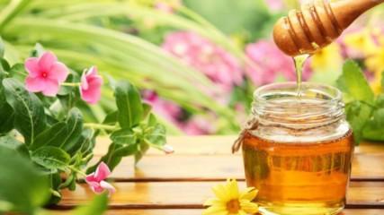 Ето как да проверите дали медът е истински