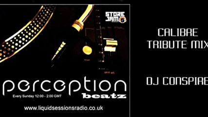 Conspire - Calibre Tribute Mix - Youtube