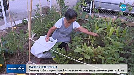 Зеленчукова градина изникна на мястото на нерегламентиран паркинг