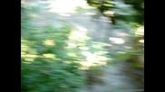 Tatil 2007 Gara Gumanin Torunlari