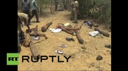 India: Police shoot 20 suspected sandalwood smugglers dead
