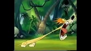 Boomerang The Lion Rofl!
