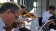 Bach - Die Kunst der Fuge Contrapunctus Viii