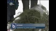 Снежни човеци и огнени скулптори, шампионати