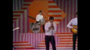 The Animals - Dont Bring Me Down 1966