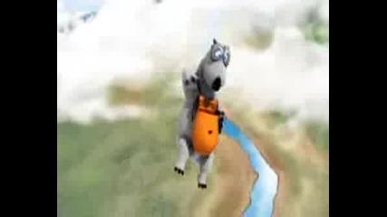 Bernard - Sky Dive