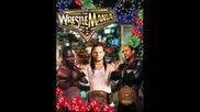 Wrestlemania 25 Theme Song