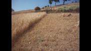 Баба истинска машина със сърпа на полето