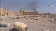IS Fighters 'laying Mines in Palmyra'