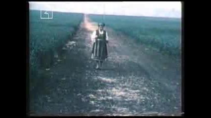 Вълкана Стоянова